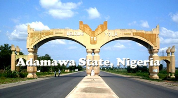adamawa state scholarship